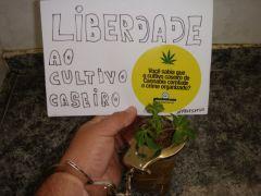 Liberdade2