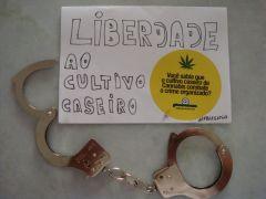 Liberdade3