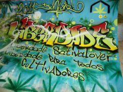 Grafite Liberdade SativaLover