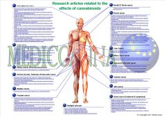 Mediccanna visual overview research articles cannabinoids
