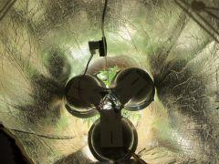 Dentro do abajur