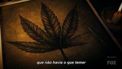 Cannabis defendida na nova série Cosmos