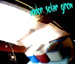 indor solar grow