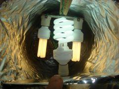 dia 22 jogo de lampadas