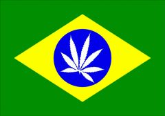 Nova Bandeira