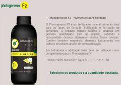 phf2.jpg
