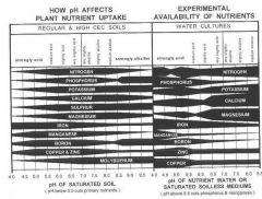 tabela de absorção de nutris.jpg