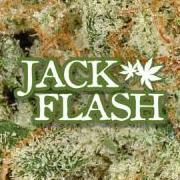 JackFlash