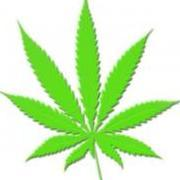 Live2weed