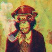 Macaco Chapado