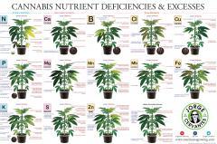 Deficiências e Excessos de Nutrientes - alta resolução