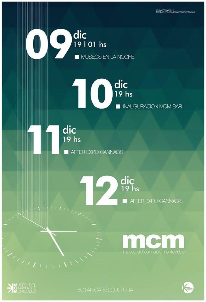 large.museocannabis.jpg