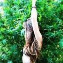 CannabisClubs