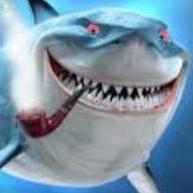 SharkRJ
