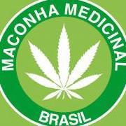 Maconha Medicinal Brasil