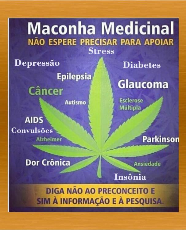 medicinal.thumb.jpg.8434d2c1025585c9701936f4704b14d1.jpg