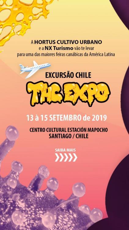 THC expo 1.jpeg