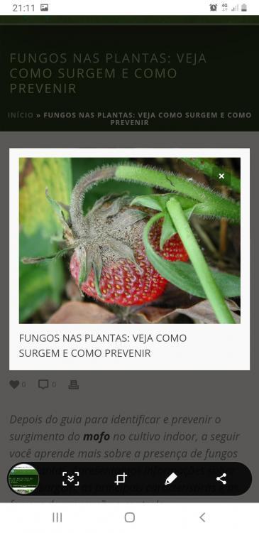 Screenshot_20200208-211150_Chrome.jpg