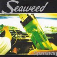 seaweed_