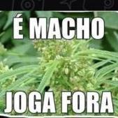 jacobinarosa
