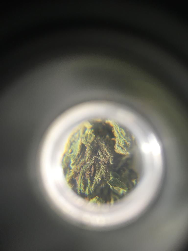 Microscopicamente