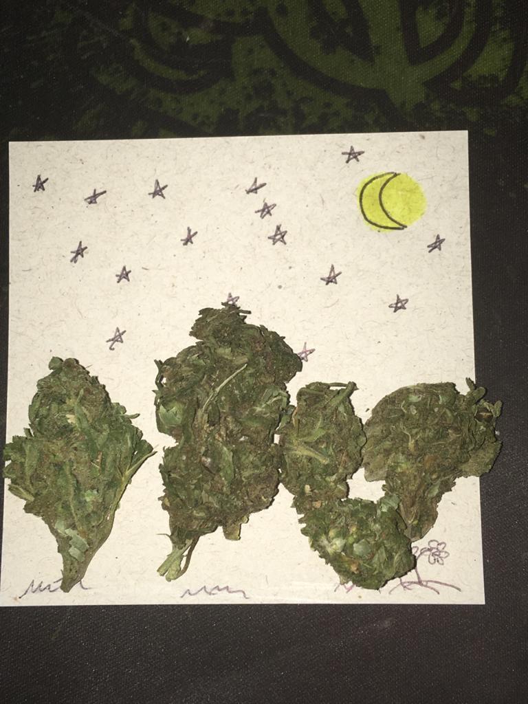 """Noite Estralada - referência à pintura de Van Gogh """"Noite Estrelada"""""""