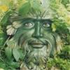 Homemverde
