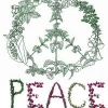 GrowForPeace