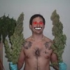 Growpobre - Meu Grow Minha... - last post by JaumRoots