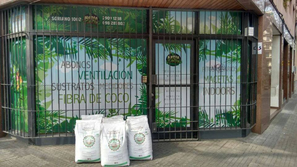 Head e Grow shops Uruguai - Media Grow