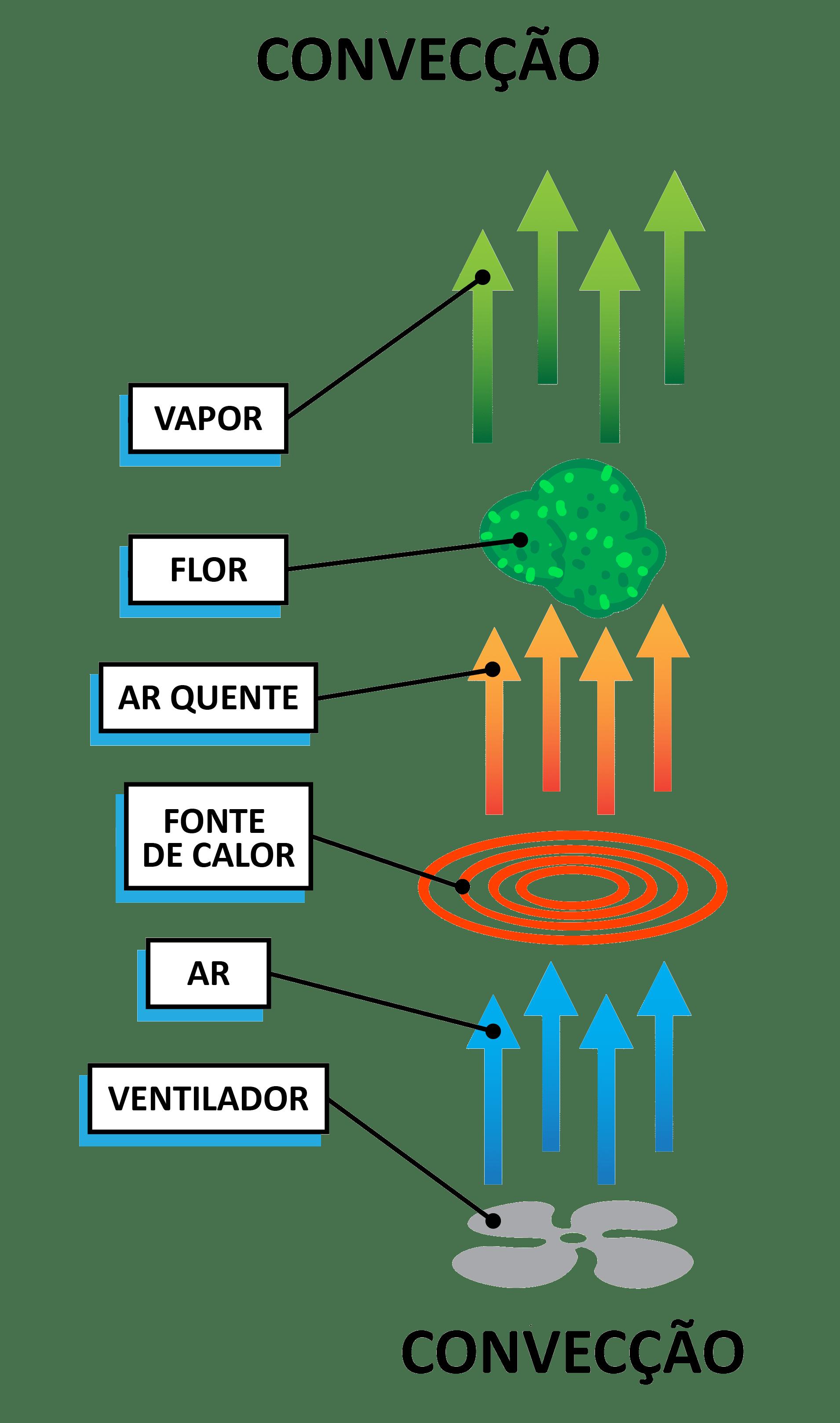 Vaporizador de Ervas - Convecção