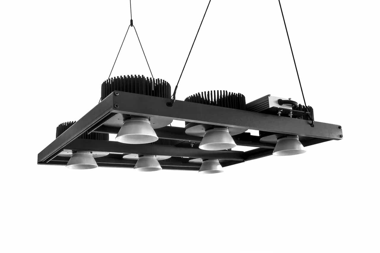 Lâmpadas e painel de LED para cultivar maconha