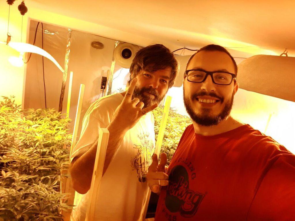 habeas corpus para cultivo medicinal de Cannabis fernando
