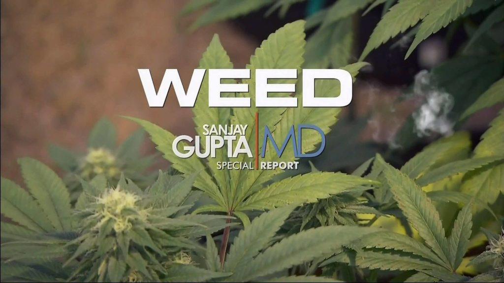 weed documentário sobre maconha da cnn