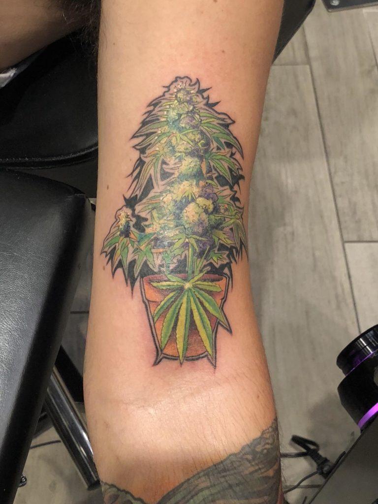 tatuagem de pé de maconha